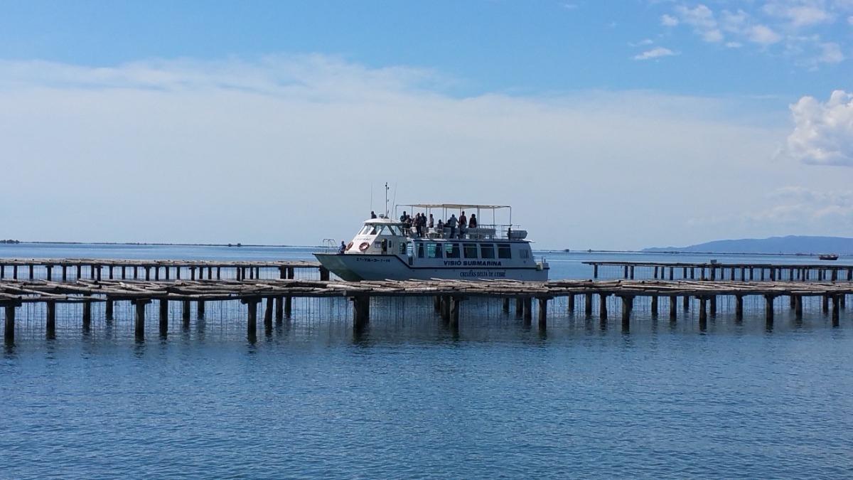 Tour panorámico por la bahía en barca  grande