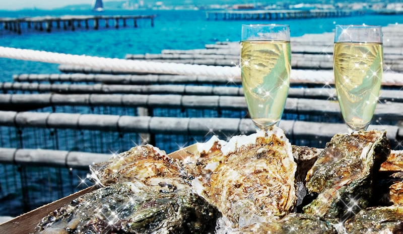 XEC REGAL - Visita i degustacio a Musclarium amb taxi maritim (musclos i ostres)