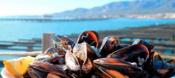 XEC REGAL - Visita i degustacio a Musclarium amb taxi maritim (musclos)