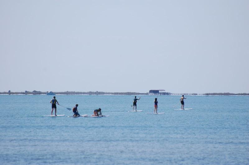 Paddle surf con guía experto por la Bahía dels Alfacs