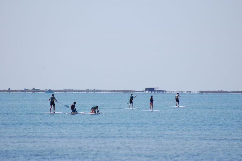 Paddle surf with experience guide across the Badia dels Alfacs